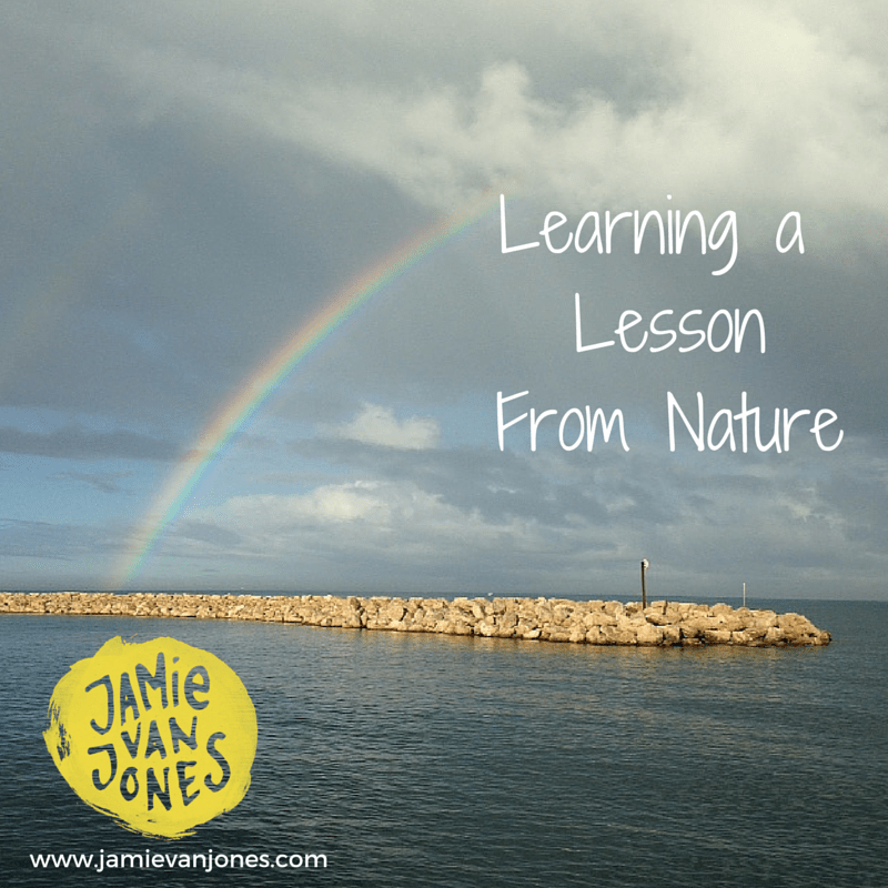 Learning a Lesson From Nature