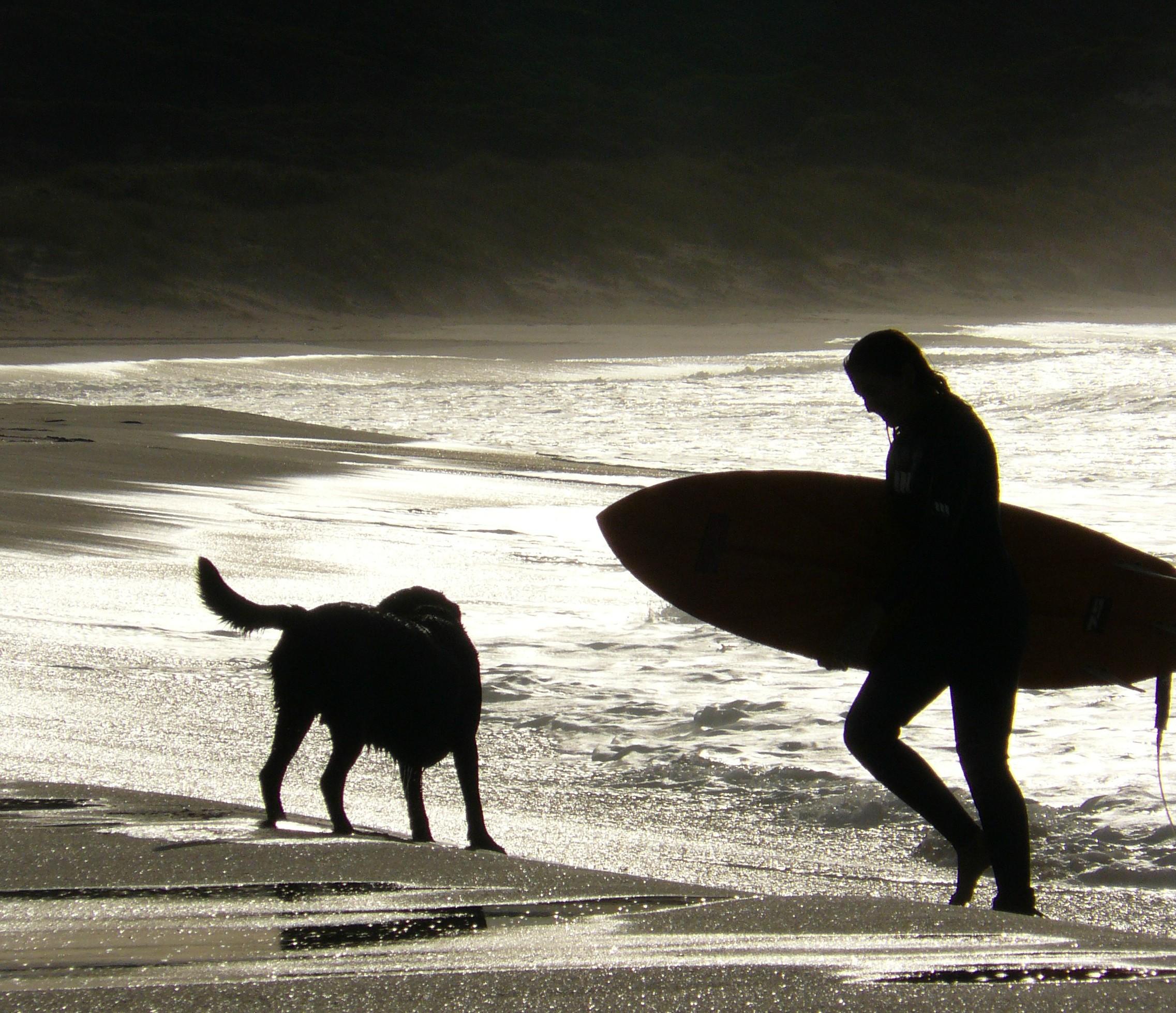 post surf wm