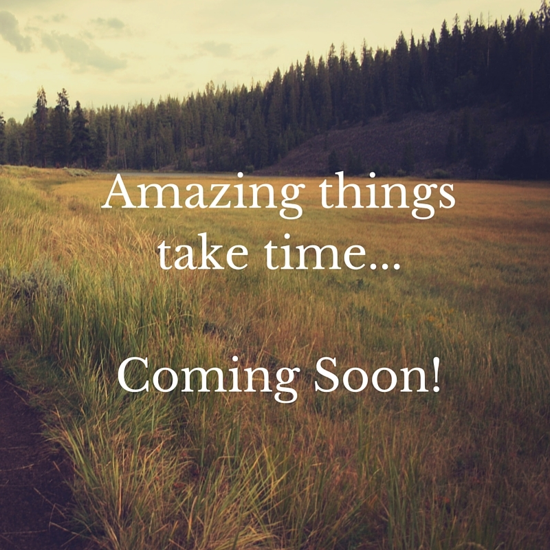 Amazing things take time...Coming Soon!